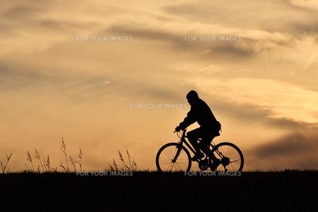 夕方のサイクリストの写真素材 [FYI00920537]