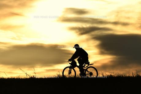 夕方のサイクリストの写真素材 [FYI00920541]