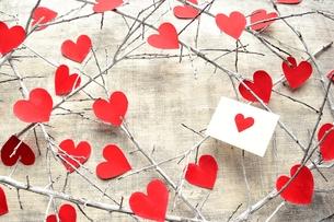 赤いハート型の切り絵と白い枯枝とメッセージカード フレームの写真素材 [FYI00920688]