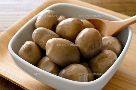 ふくろ茸の水煮の写真素材 [FYI00921210]