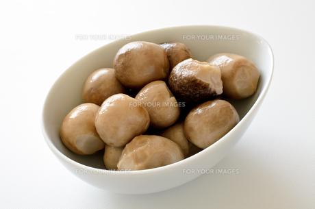 ふくろ茸の水煮の写真素材 [FYI00921213]