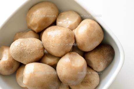 ふくろ茸の水煮の写真素材 [FYI00921214]