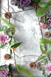正月の花 銀色背景の写真素材 [FYI00921246]