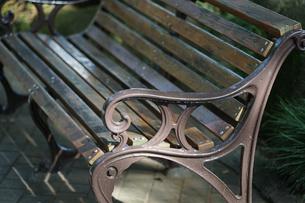 晴れた公園のベンチの写真素材 [FYI00921263]