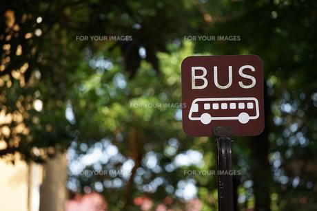 公園の緑とバス停の看板の写真素材 [FYI00921264]