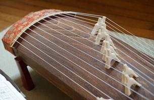 和楽器の琴の写真素材 [FYI00921266]
