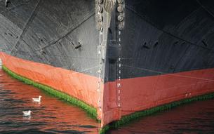 港に停泊している船の船尾                                 の写真素材 [FYI00921268]