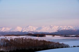 夕映えの雪山 十勝岳連峰の写真素材 [FYI00921432]