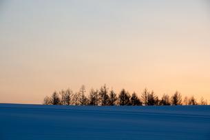 夕空と雪原の写真素材 [FYI00921435]