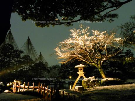 雪の兼六園 ライトアップの写真素材 [FYI00921585]
