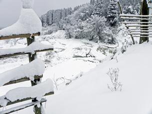 雪の棚田‐01の写真素材 [FYI00921588]