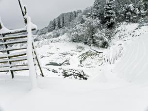 雪の棚田‐02の写真素材 [FYI00921589]
