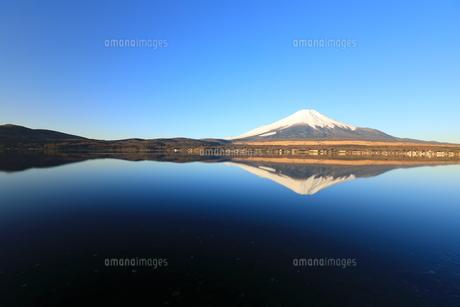 富士山の写真素材 [FYI00921599]