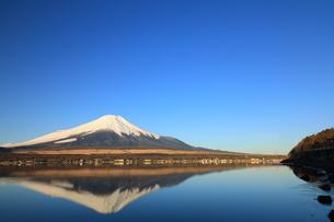 富士山の写真素材 [FYI00921603]