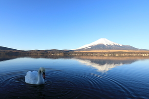 富士山の写真素材 [FYI00921607]