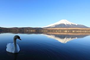 富士山の写真素材 [FYI00921612]