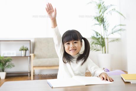 勉強をする女の子の写真素材 [FYI00921995]