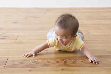 ハイハイする赤ちゃんの素材 [FYI00922236]