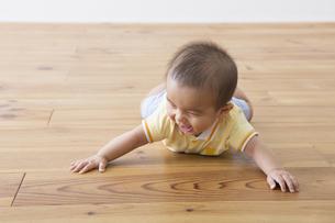 ハイハイする赤ちゃんの写真素材 [FYI00922236]