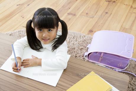 勉強をする女の子の写真素材 [FYI00922348]