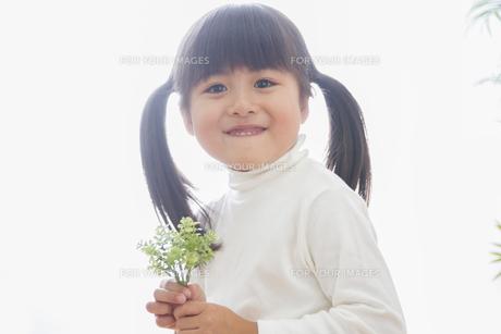 苗を持つ女の子の素材 [FYI00922472]