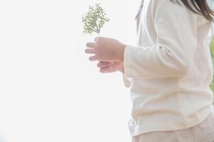 苗を持つ女の子の素材 [FYI00922488]