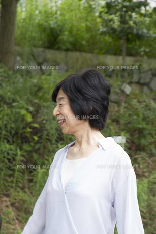 公園を歩く家族の写真素材 [FYI00922552]