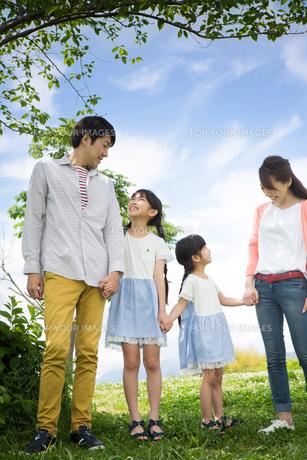 ピクニックをする家族の素材 [FYI00922593]