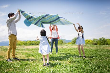 ピクニックをする家族の写真素材 [FYI00922596]
