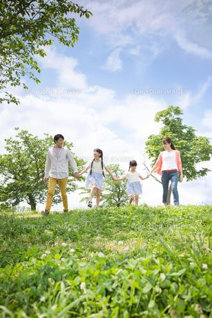 ピクニックをする家族の素材 [FYI00922598]