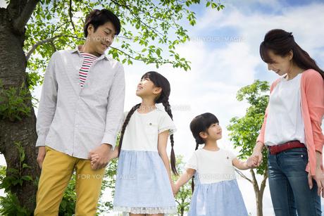 ピクニックをする家族の素材 [FYI00922601]