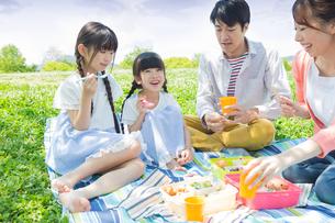 ピクニックをする家族の写真素材 [FYI00922609]
