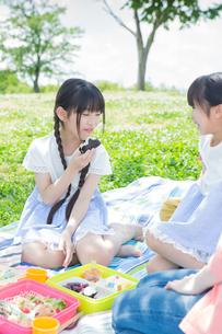 ピクニックをする家族の写真素材 [FYI00922619]