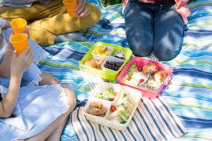 ピクニックをする家族の写真素材 [FYI00922625]
