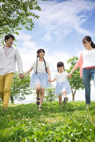 ピクニックをする家族の写真素材 [FYI00922628]
