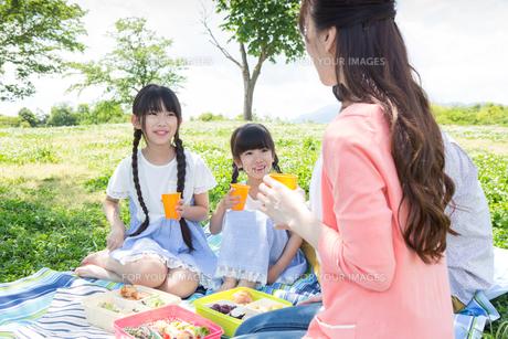 ピクニックをする家族の写真素材 [FYI00922632]