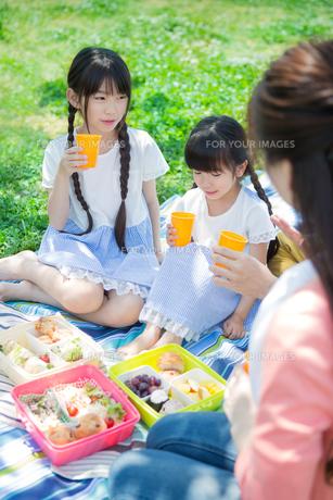ピクニックをする家族の写真素材 [FYI00922633]