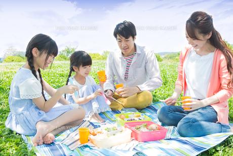 ピクニックをする家族の写真素材 [FYI00922634]