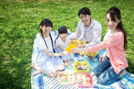 ピクニックをする家族の写真素材 [FYI00922635]