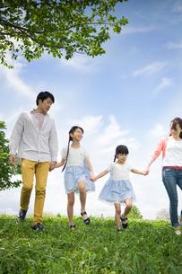ピクニックをする家族の写真素材 [FYI00922639]