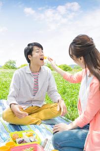 ピクニックをする家族の写真素材 [FYI00922641]