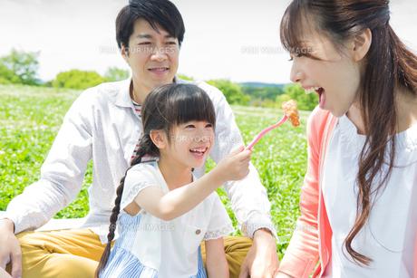 ピクニックをする家族の素材 [FYI00922645]