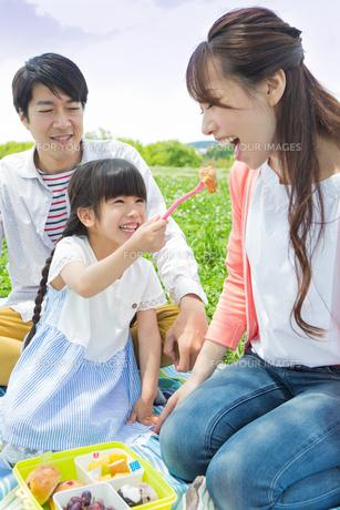ピクニックをする家族の写真素材 [FYI00922653]