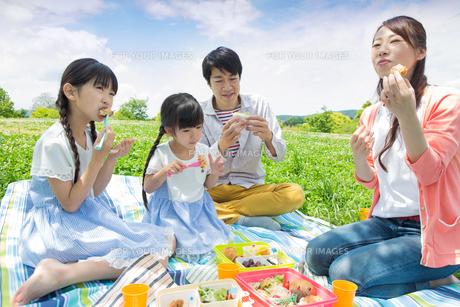 ピクニックをする家族の写真素材 [FYI00922655]
