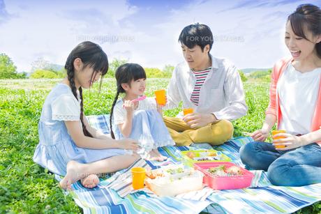 ピクニックをする家族の写真素材 [FYI00922662]