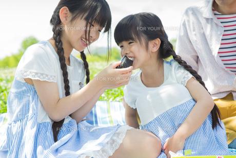 ピクニックをする家族の写真素材 [FYI00922663]