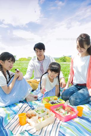 ピクニックをする家族の写真素材 [FYI00922666]