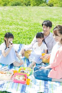 ピクニックをする家族の写真素材 [FYI00922673]