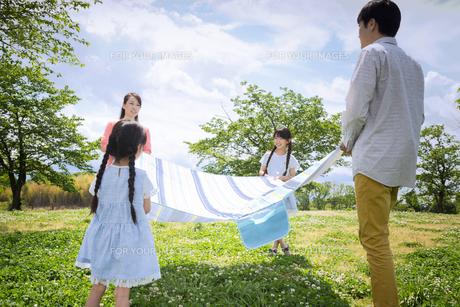ピクニックをする家族の写真素材 [FYI00922677]