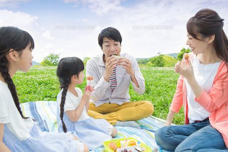 ピクニックをする家族の写真素材 [FYI00922679]
